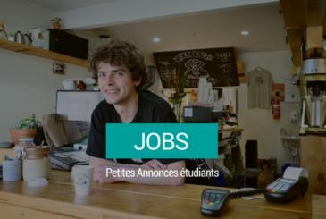 jobs-petites-annonces-kotplanet