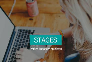 stages-petites-annonces-kotplanet