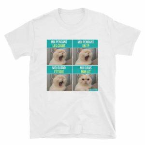 y-shirt-humour-étudiant-mème